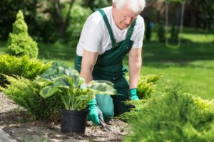 Don't Hurt Yourself! 6 Tips to Consider Before Performing Spring Lawn Care