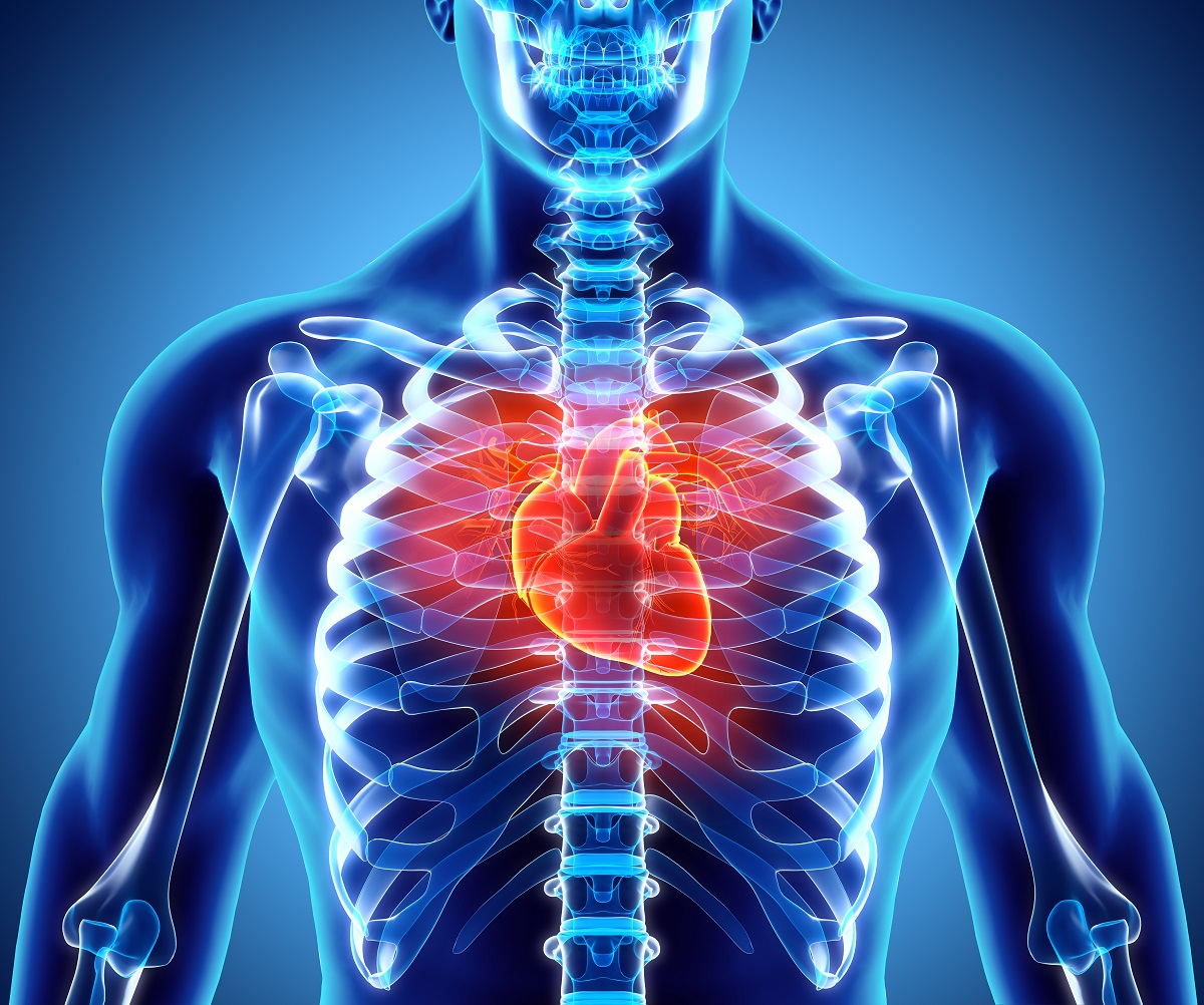 How Chiropractic Care Can Improve Heart Health